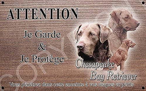 Pets-Easy.com Panneau Attention au Chien personnalisée Retriever de Chesapeake - pré percée et vis proposées. De 30 cm à 15 cm…
