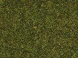 NOCH 08212 - Spielwaren, Streugras Wiese, 1.5 mm -
