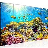 Bilder Unterwasser Korallen Wandbild 150 x 60 cm Vlies -