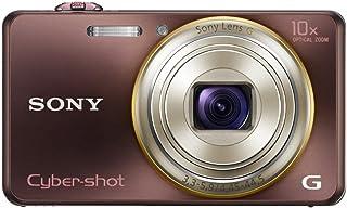 索尼 SONY Cyber-shot WX100 (1820万/光学x10) 棕色