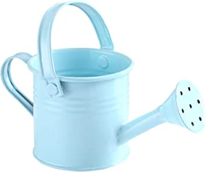 TRRAPLE Metal Watering Can, Children Garden Watering Bucket Iron Watering Tin Can Sprinkling Kettle for with Two Handles Gardening