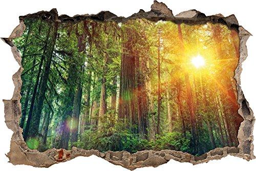 Wald bei Sonnenlicht Wanddurchbruch im 3D-Look, Wand- oder Türaufkleber Format: 92x62cm, Wandsticker, Wandtattoo, Wanddekoration