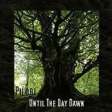 Songtexte von Pilori - Until the Day Dawn