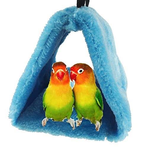 Conure Supplies Amazon Com