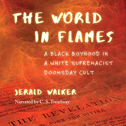 The World in Flames audiobook cover art