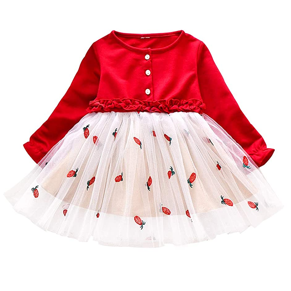 ChenXi Store Infant Baby Girls Long Sleeve Cotton Flower Dress Embroidered Pineapple Tutu Dress
