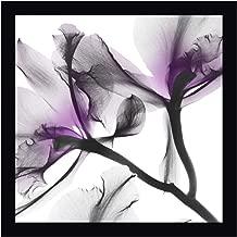 Lavender Luster 1 by Albert Koetsier 34