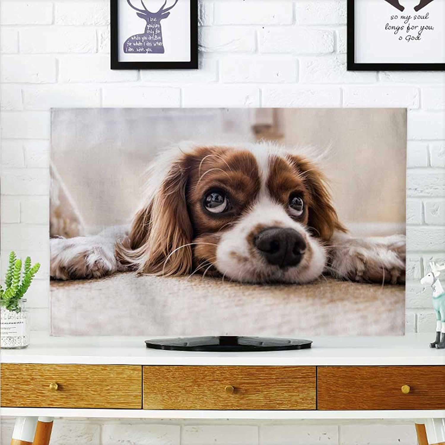 Aolankaili Cord Cover for Wall Mounted tv Pet Dog Cover Mounted tv W32 x H51 INCH TV 55