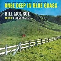 Knee Deep in Bluegrass