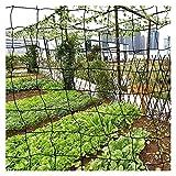 Engfgh 4m De Ancho Anti Aves De Protección De Pájaros Red De Jardín para Jardinería Charca De Aves De Corral Malla De Paloma para Proteger Plantas Verduras Frutales Árbol (Size : 4x15M)