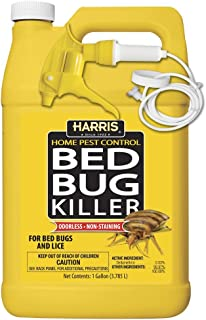 Best strongest bed bug killer Reviews