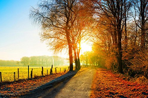 Autumn Farm Fields Country Road Sunset Landscape Photo Photograph Cool Wall Decor Art Print Poster 36x24