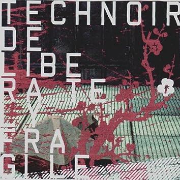 Deliberately Fragile (Bonus Disc)