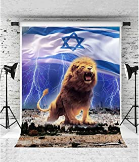 Best israel flag with lion Reviews