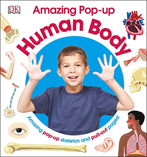 Amazing Pop-up Human Body: Amazing Pop-Up Skeleton and Pull-Out Pages!