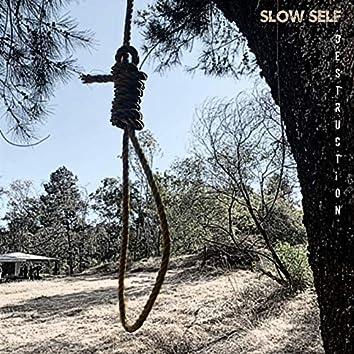 Slow Self Destruction