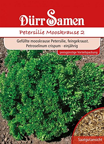 Dürr Samen 5129 Petersilie Mooskrause 2, 100 g (Petersiliensamen)