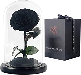 """The ultimate """"Beauty and the Beast"""" keepsake,Forever Flowers,Preserved Real Fresh Rose in Glass Dome Cover with Gift Box for Her,Valentine's Day, Mother's Day, Anniversary, Birthday, wedding(black)"""