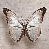 Lupia Quadro su Tela Silver con Glitter World 40x40 cm Farfalla Shabby