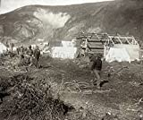 Dawson City C1897 Nlog Cabins And Tents Along The Riverside At The Gold Mining Town Of Dawson City Yukon Territory Canada Photograph C1897 Poster Print by (18 x 24)