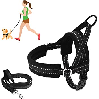 SlowTon No Pull Small Dog Harness and Leash, Heavy Duty Easy for Walk Vest Harness Soft Padded Reflective Adjustable Puppy Harness Anti-Twist Pet Lead Quick Fit for Small Dog Cat Animal