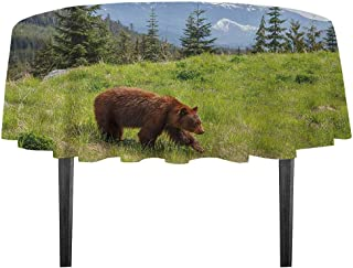 kangkaishi Bear Easy Care Leakproof and Durable Tablecloth Wildlife up in The Mountains Theme Furry Animal Carnivore Yellowstone Nature Habitat Outdoor Picnic D43.3 Inch Green Brown