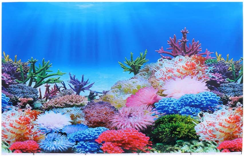 Free shipping anywhere in the Large discharge sale nation VILLCASE Fish Tank Background - 2 Sided Wallpaper 3D
