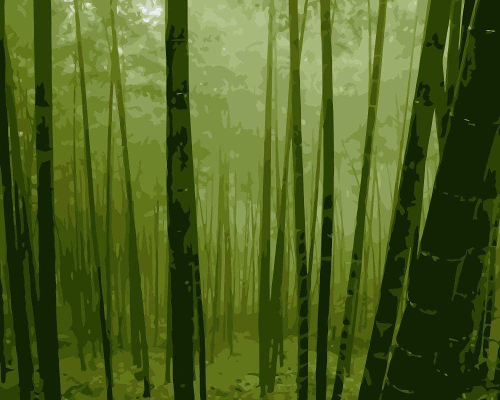 HRKDHBS DIY Max 64% OFF Painting by Number Forest wi Kits Landscape 40X50Cm famous