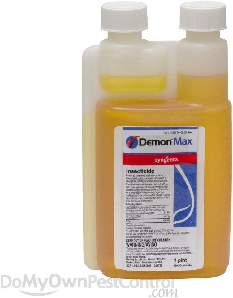 Bargain Now on sale Demon Max 16OZ