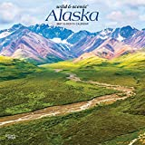 Alaska Wild & Scenic 2021 12 x 12 Inch Monthly Square Wall Calendar, USA United States of America Noncontiguous State Nature