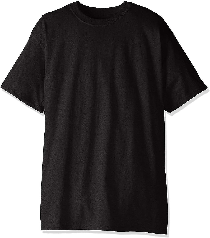 Hanes Men's Beefy-T Tall T-Shirt 2PK
