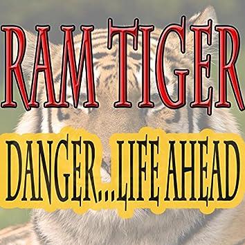 Danger...Life Ahead