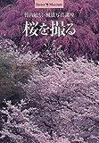 桜を撮る―竹内敏信・風景写真講座 (ショトル・ミュージアム)