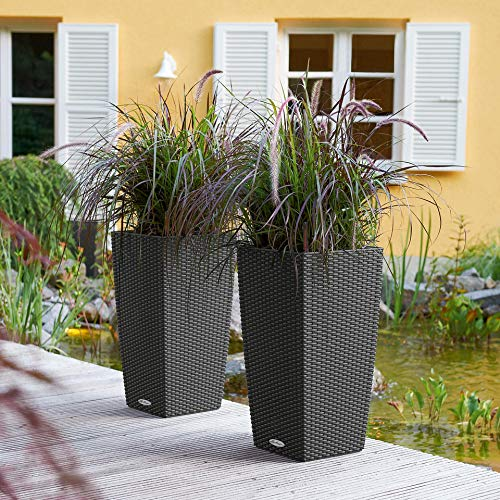 Lechuza 15222 Cubico Cottage 30 Self-Watering Garden Planter for Indoor and Outdoor Use, Granite Wicker