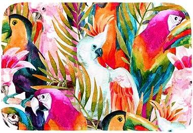 EGGDIOQ Doormats Parrot Pattern Custom Print Bathroom Mat Waterproof Fabric Kitchen Entrance Rug, 23.6 x 15.7in