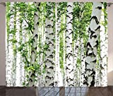Ambesonne Woodland Curtains, Birch Trees in The Forest Summertime Wildlife Nature Outdoors Themed Picture, Living Room Bedroom Window Drapes 2 Panel Set, 108' X 90', White Green