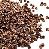 #DoYourYoga Cáscara de Trigo Sarraceno Orgánico para Rellenar - Ideal para Relleno de Puffs, Almohadas y Cojines de 1 kg a 30 kg - Cultivo Ecológico y Libre de Sustancias Nocivas - 10 kg