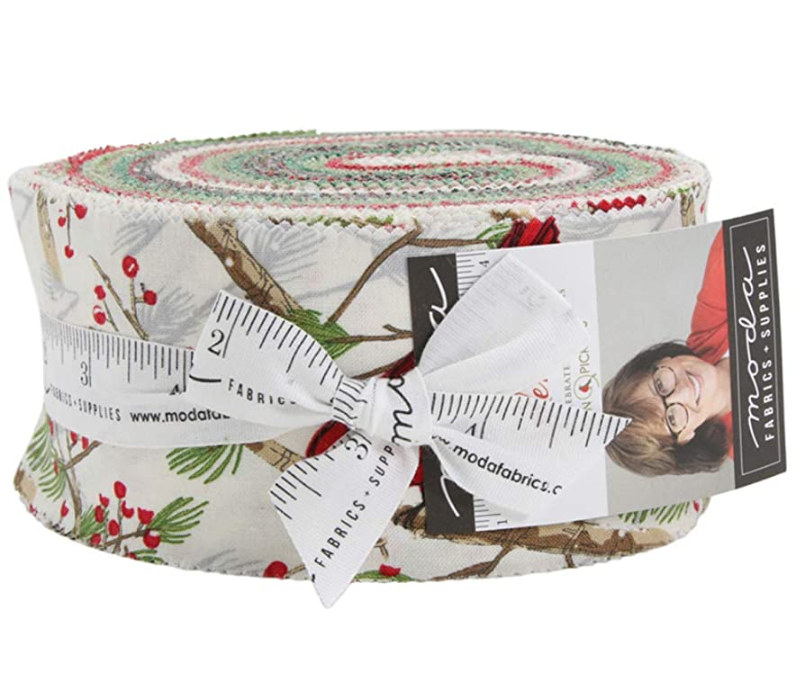 Splendid Jelly Roll 40 2.5-inch Strips by Robin Pickens for Moda Fabrics aylwggjxtval1