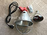 Pauls Pet Care Infrared Radiant Heat Lamp & Red Bulb High Low Switch Dog Puppy Kennel