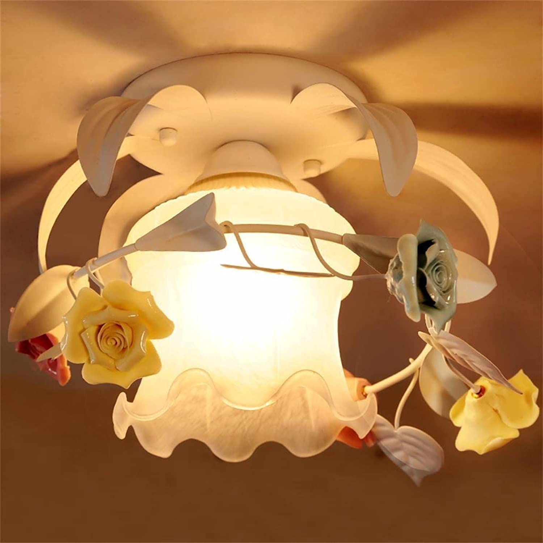 Flash-Country-Stil Lampe nach Hause Foyer Gang PorGrößempen Keramik Blaume Eisen
