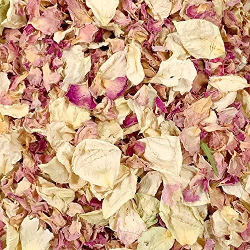 Stripey Finds Rosenbl/üten-Konfetti biologisch abbaubar 1 Liter Vintage-Rosa 56 Vintage Pink Rose