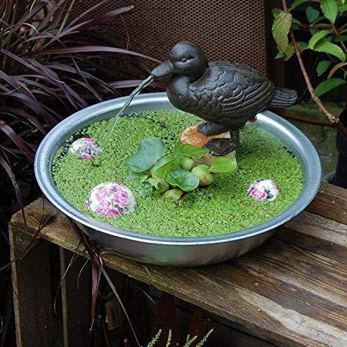 Gartenzaubereien Wasserspeier Ente, inkl. Pumpe braun