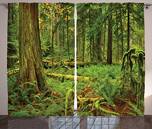 Hmihilu Tree Curtains, Idyllic Lush Rainforest in Canadian Island with Ferns Moss on Tree Nature Ecology Photo, Living Room Bedroom Window Drapes 2 Panel Set,Emerald Green 110x63 in
