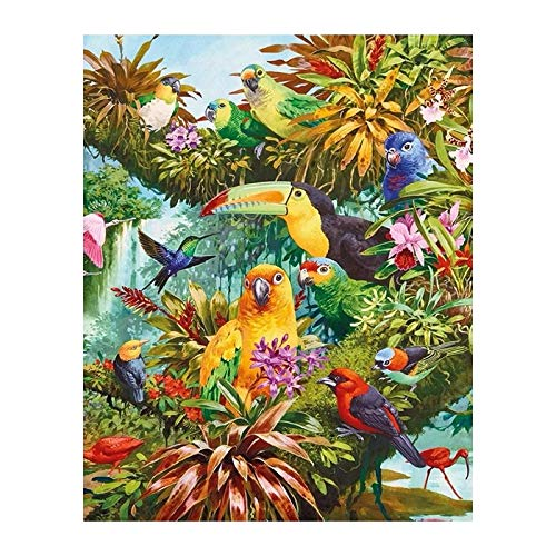 Full Roundround Drill 5D DIY Diamond Painting Various Birds in Anime 3D Embroidery Cross Stitch Mosaic Home Decor