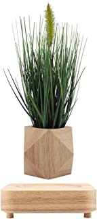 Creative Megnetic Levitating Air Plant Wooden Pot with Bionic Floating Suspension Rotation Flower Gardening Bonsai for Home Office Decoration Gift (US Plug)