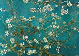 Poster Van Gogh - Mandelblüte - 140 x 100 cm | Posters.de