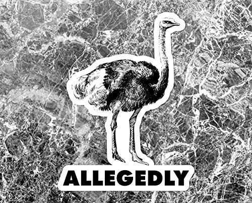 Allegedly Sticker, Vinyl Sticker Decal, Inspired by Letterkenny Decal, Inspired by Letterkenny sticker, Letter Kenny Sticker Decal 5