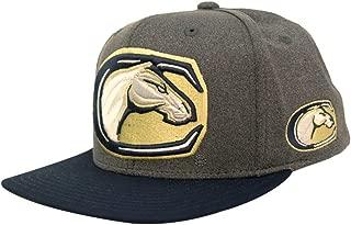UC Davis Mascot Snapback Hat