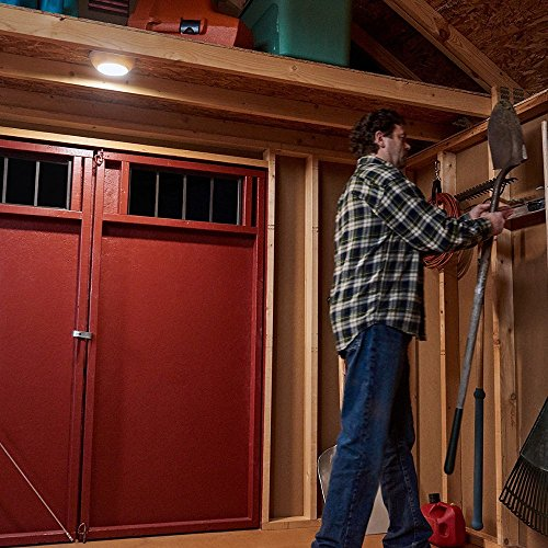 Best Shed Lighting Options and Solutions