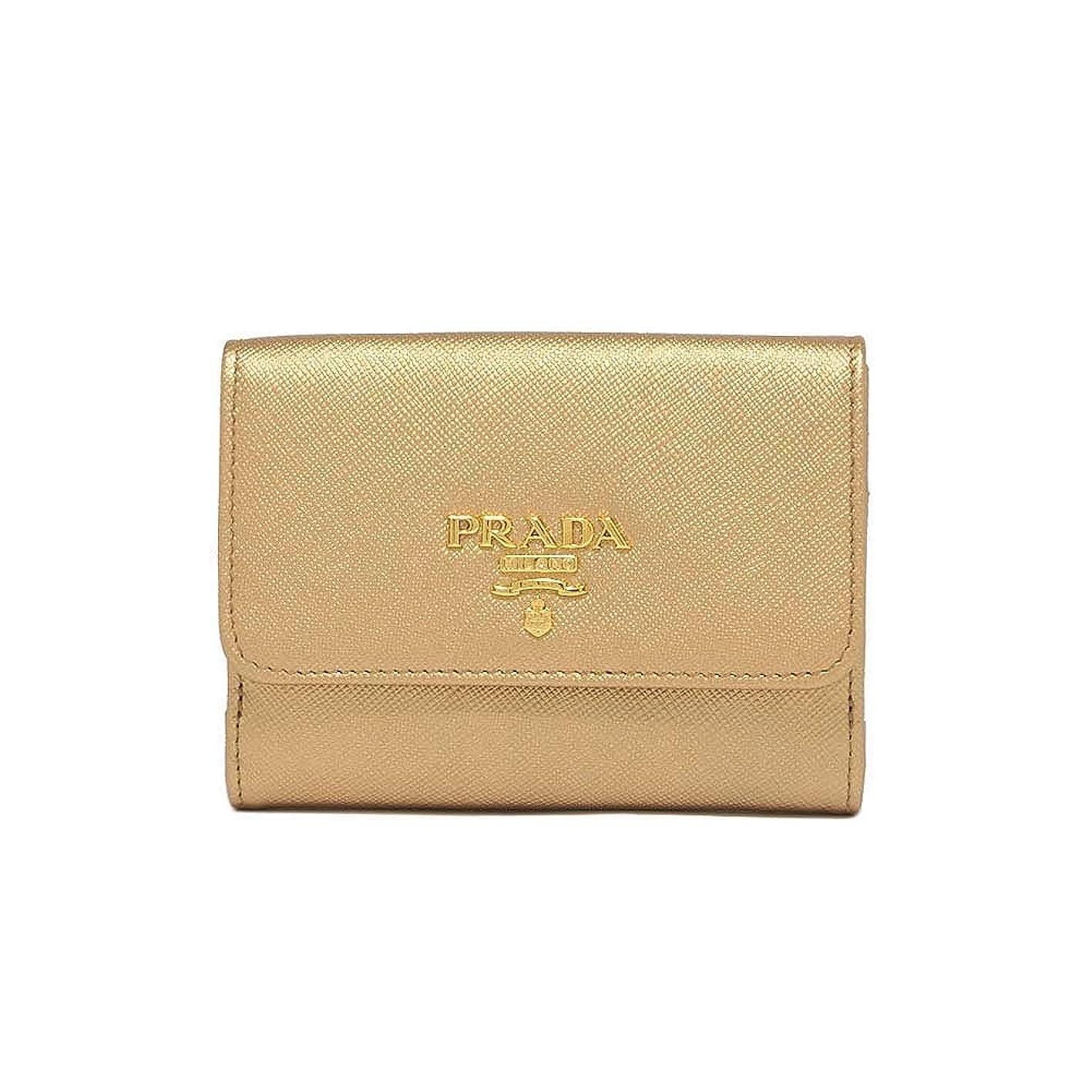 ピュー生態学香り(プラダ) PRADA Logo Leahter Wallet 二つ折財布 #1MH523 QWA F0CGQ 並行輸入品
